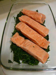 salmon-4230_1920